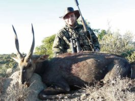 An Effective way to hunting in role deer 2020 - Fotograpiya